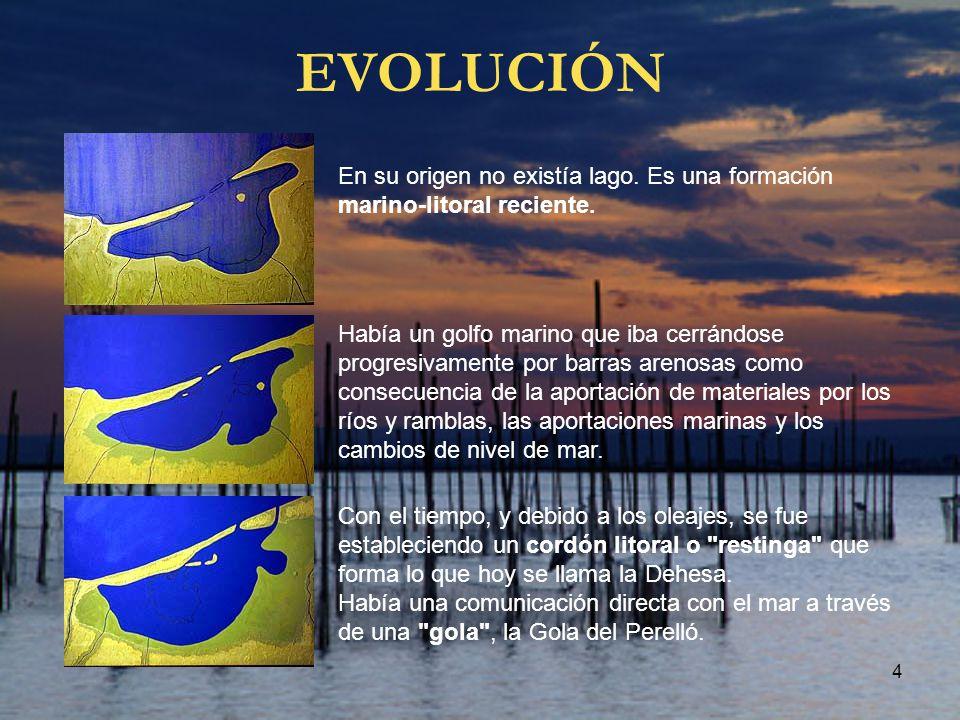 EVOLUCIÓN En su origen no existía lago. Es una formación marino-litoral reciente.