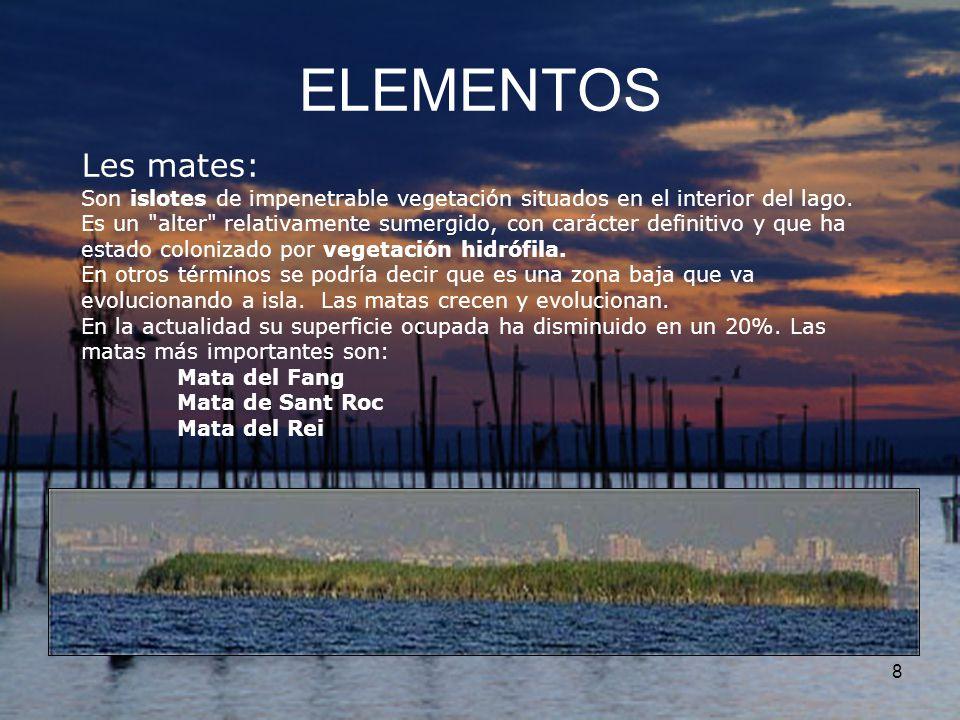 ELEMENTOS Les mates: