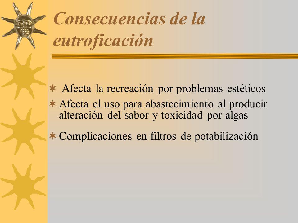 Consecuencias de la eutroficación