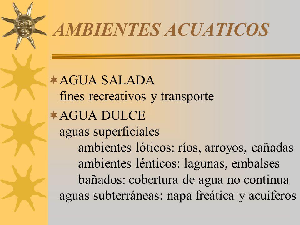 AMBIENTES ACUATICOS AGUA SALADA fines recreativos y transporte