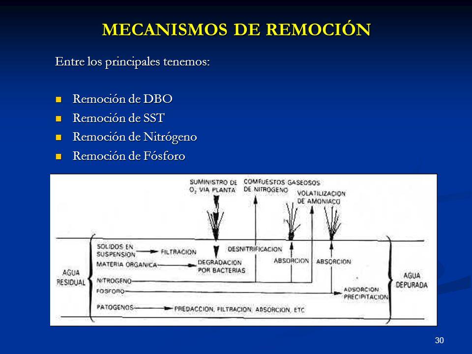 MECANISMOS DE REMOCIÓN