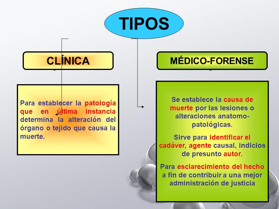 TIPOS CLÍNICA MÉDICO-FORENSE