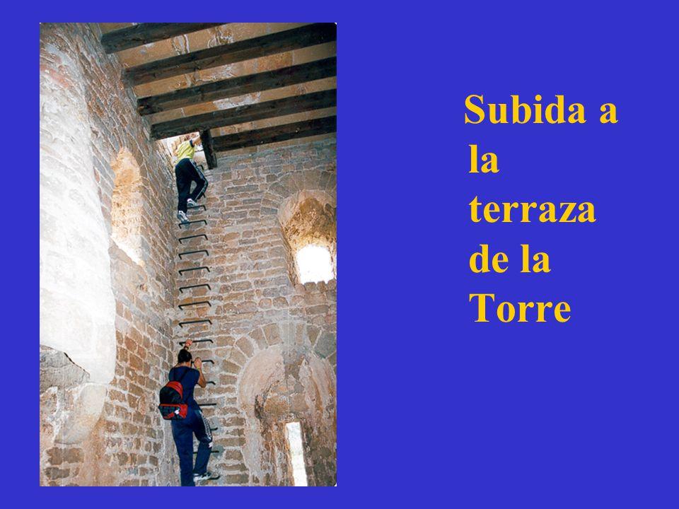 Subida a la terraza de la Torre