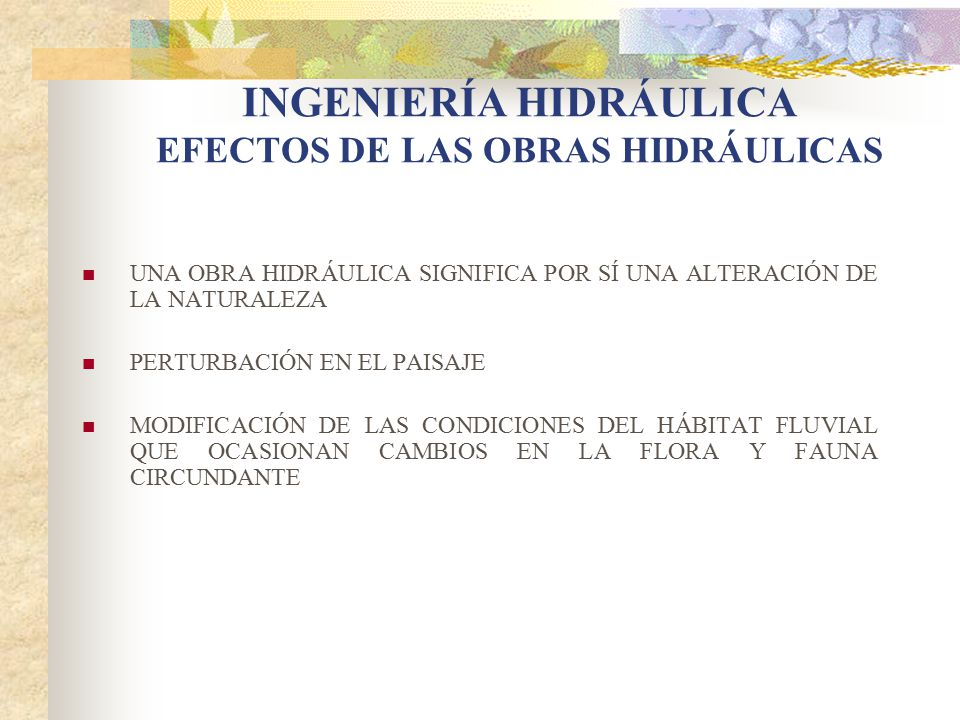 INGENIERÍA HIDRÁULICA EFECTOS DE LAS OBRAS HIDRÁULICAS