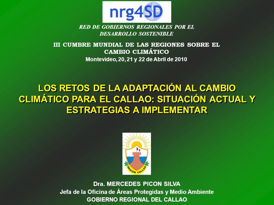 RED DE GOBIERNOS REGIONALES POR EL DESARROLLO SOSTENIBLE