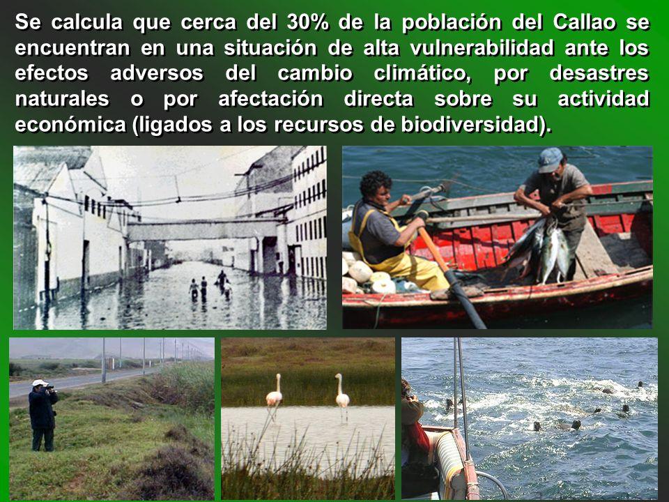Se calcula que cerca del 30% de la población del Callao se encuentran en una situación de alta vulnerabilidad ante los efectos adversos del cambio climático, por desastres naturales o por afectación directa sobre su actividad económica (ligados a los recursos de biodiversidad).
