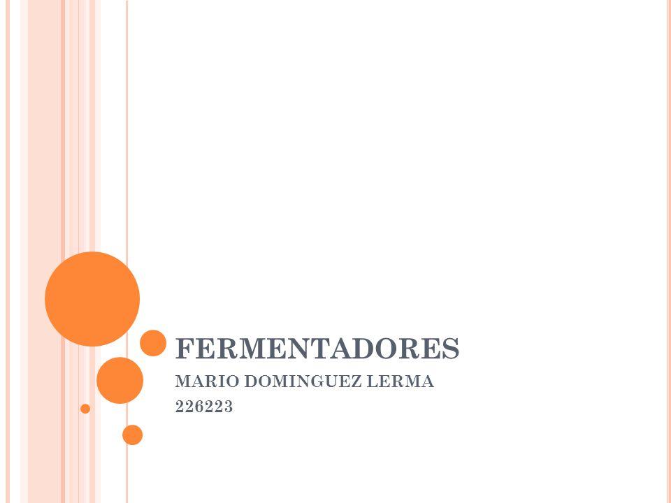 FERMENTADORES MARIO DOMINGUEZ LERMA 226223