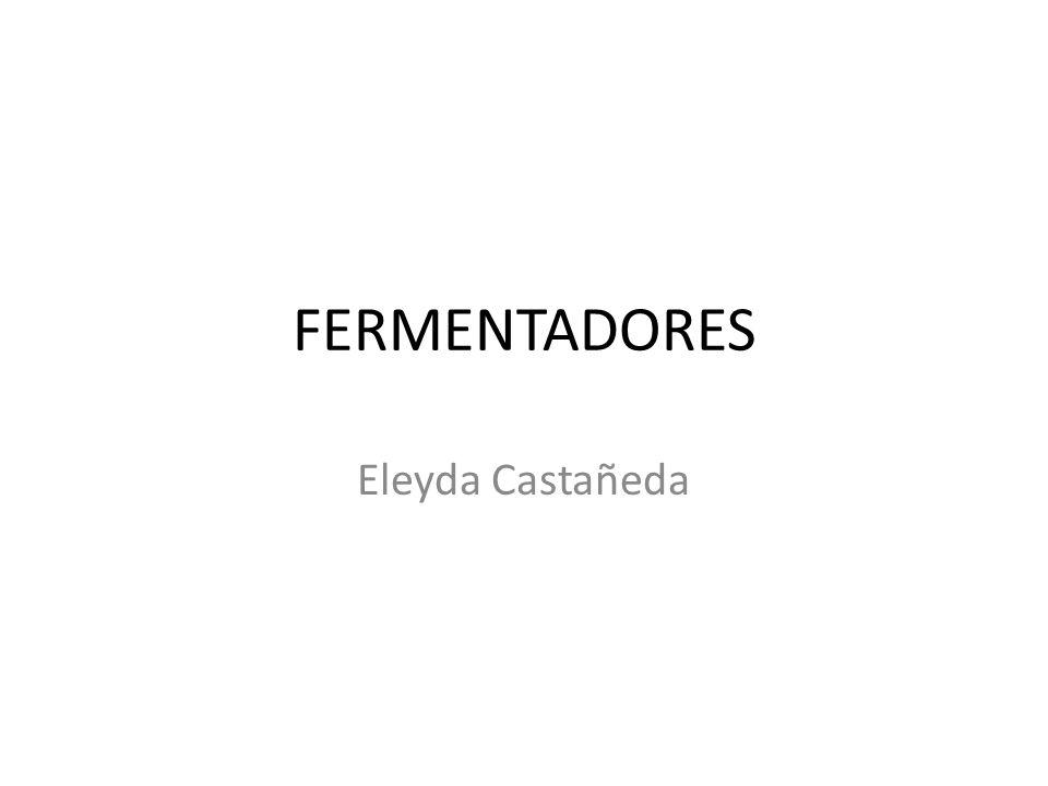 FERMENTADORES Eleyda Castañeda