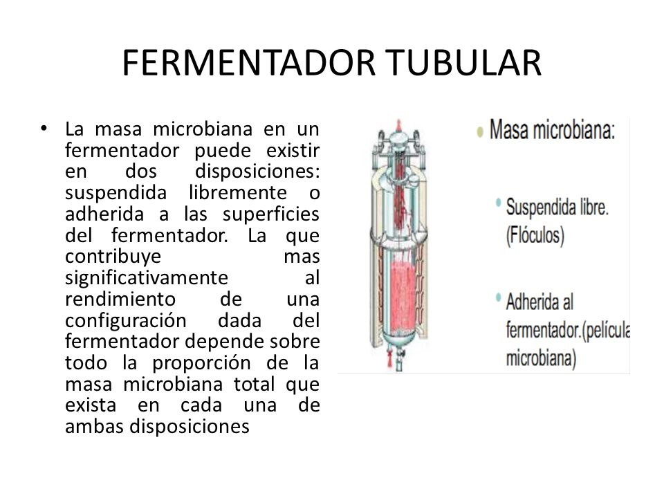 FERMENTADOR TUBULAR