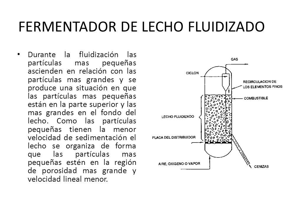 FERMENTADOR DE LECHO FLUIDIZADO