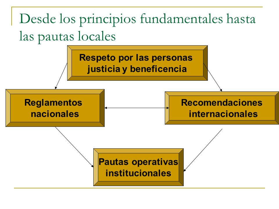 Desde los principios fundamentales hasta las pautas locales