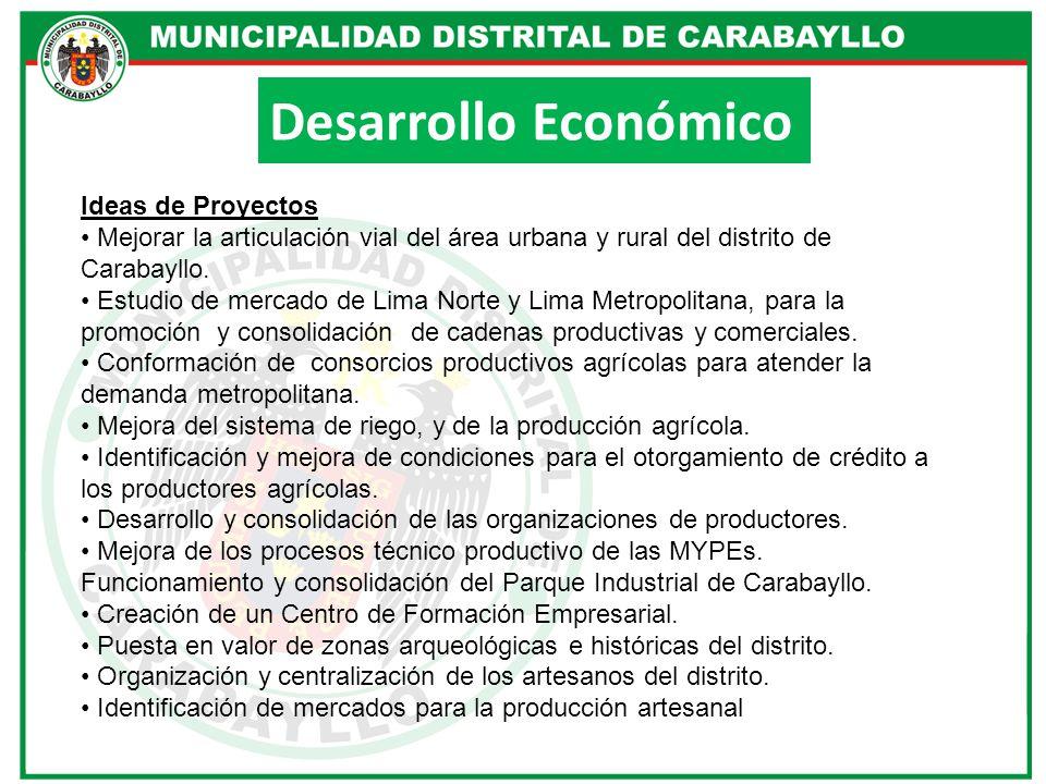 Desarrollo Económico Ideas de Proyectos