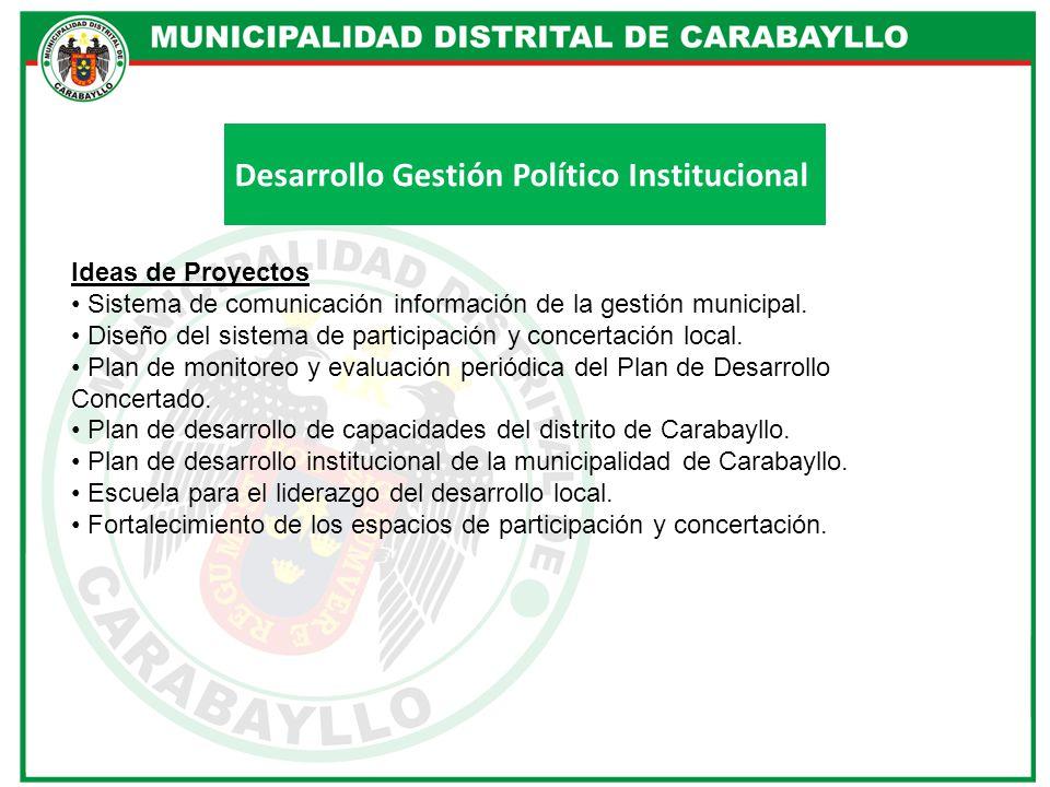 Desarrollo Gestión Político Institucional