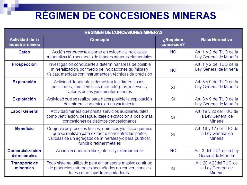 RÉGIMEN DE CONCESIONES MINERAS
