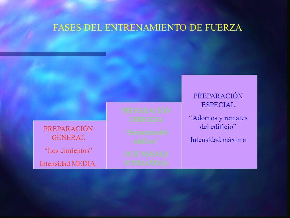 FASES DEL ENTRENAMIENTO DE FUERZA