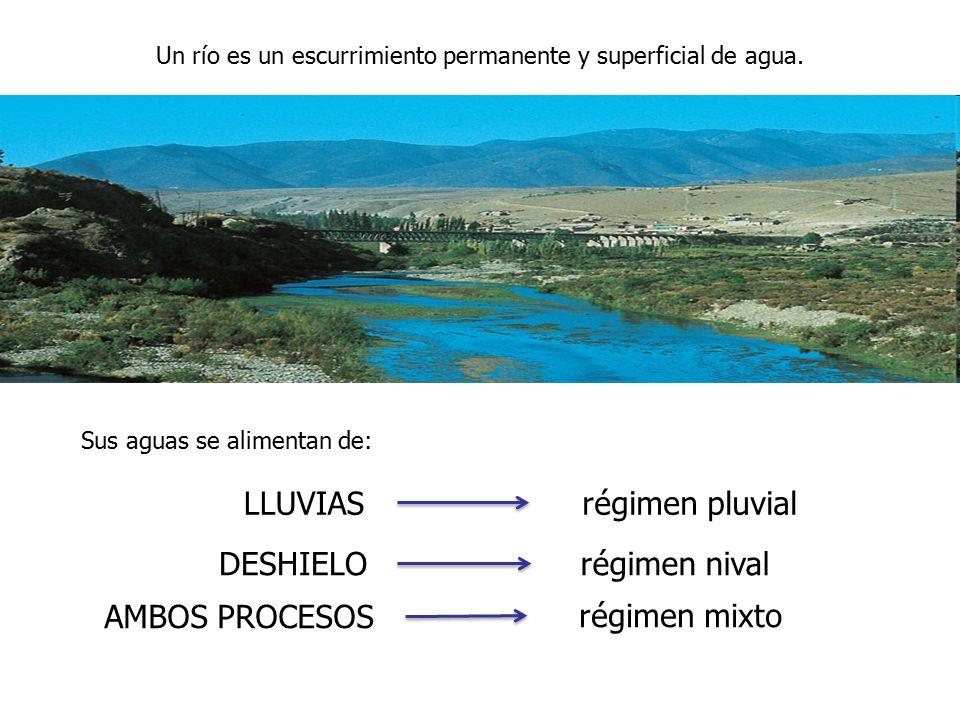 Un río es un escurrimiento permanente y superficial de agua.