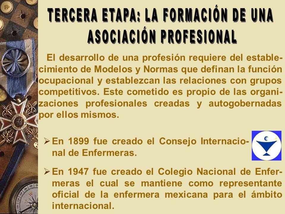 TERCERA ETAPA: LA FORMACIÓN DE UNA ASOCIACIÓN PROFESIONAL