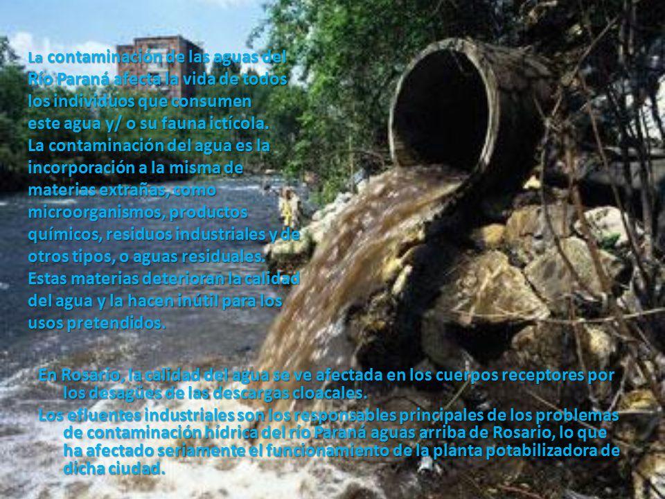 La contaminación de las aguas del Río Paraná afecta la vida de todos los individuos que consumen este agua y/ o su fauna ictícola. La contaminación del agua es la incorporación a la misma de materias extrañas, como microorganismos, productos químicos, residuos industriales y de otros tipos, o aguas residuales. Estas materias deterioran la calidad del agua y la hacen inútil para los usos pretendidos.