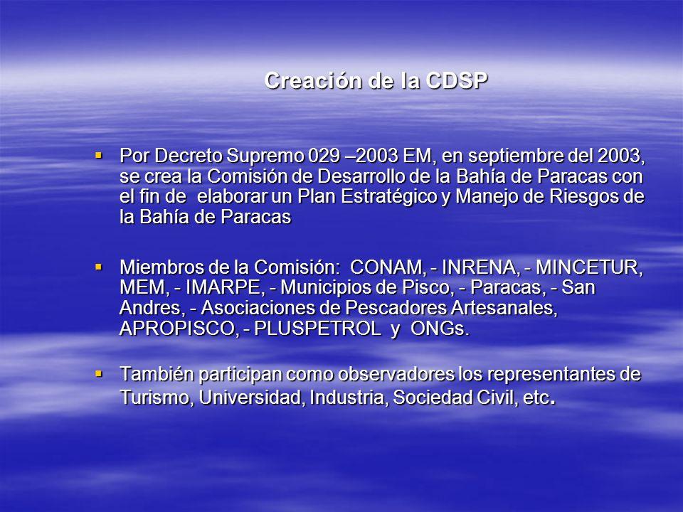 Creación de la CDSP