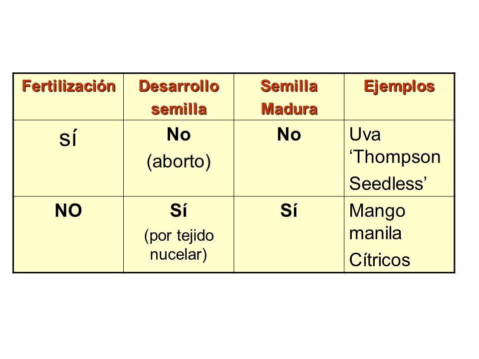 sí No (aborto) Uva 'Thompson Seedless' NO Sí Mango manila Cítricos