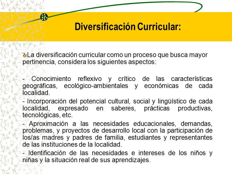 Diversificación Curricular: