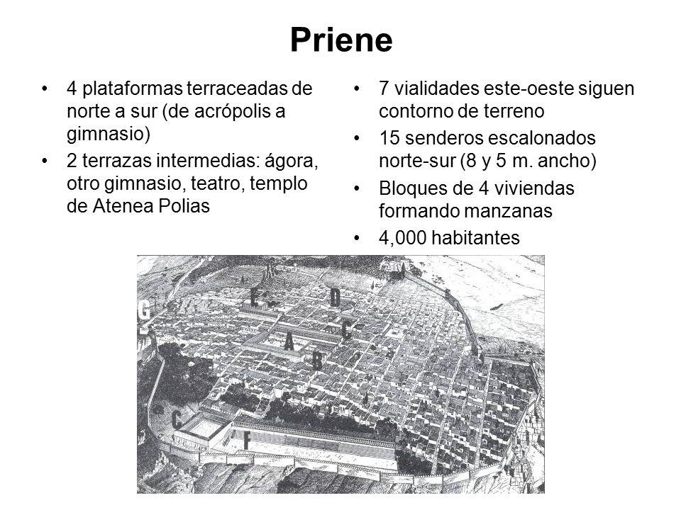 Priene 4 plataformas terraceadas de norte a sur (de acrópolis a gimnasio)
