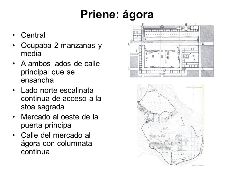 Priene: ágora Central Ocupaba 2 manzanas y media