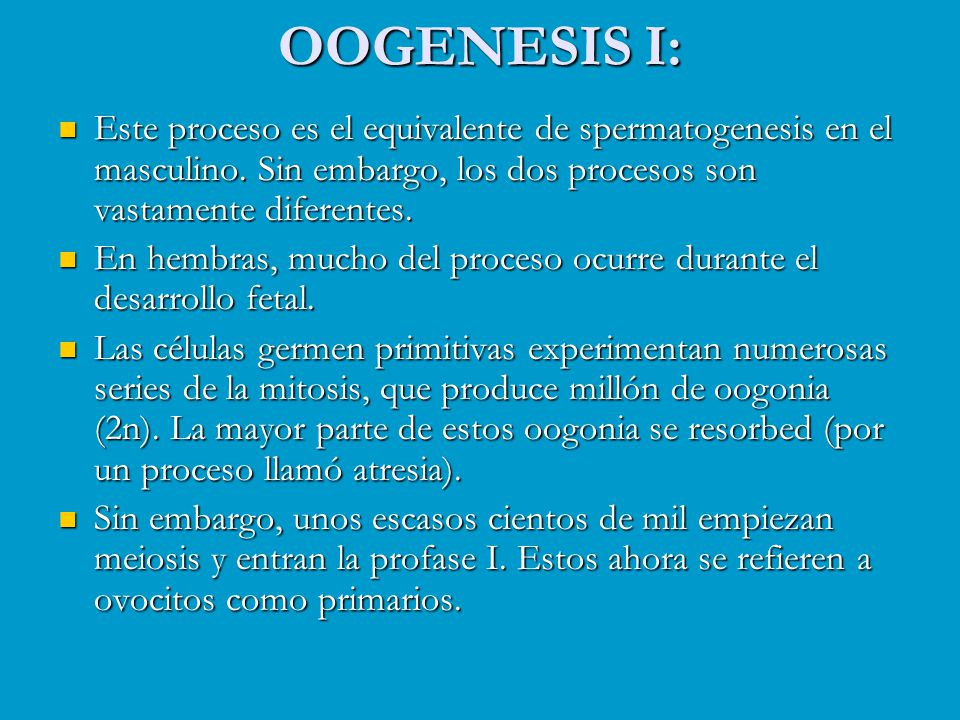 OOGENESIS I: Este proceso es el equivalente de spermatogenesis en el masculino. Sin embargo, los dos procesos son vastamente diferentes.