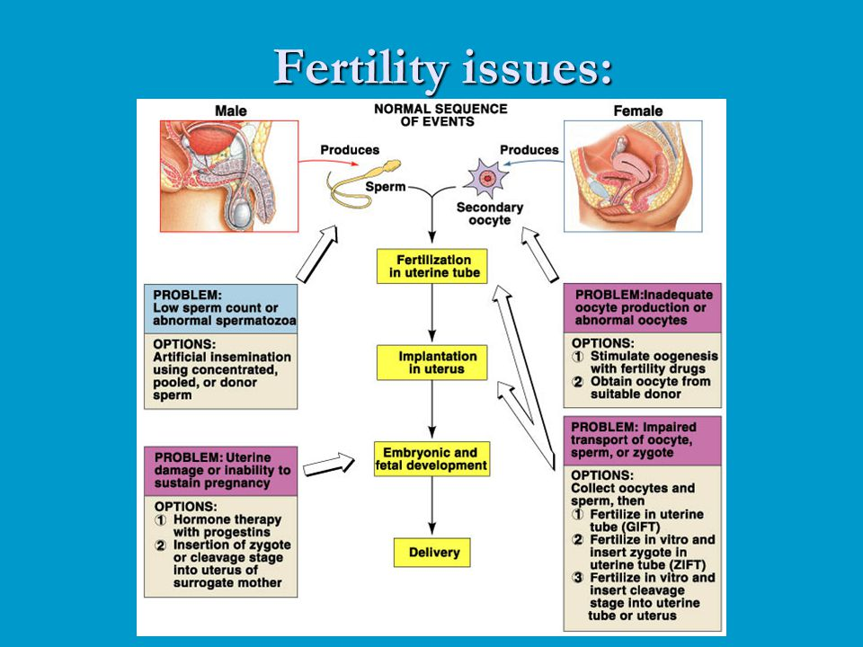 Fertility issues: