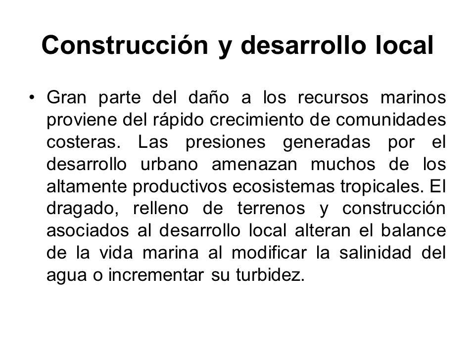 Construcción y desarrollo local