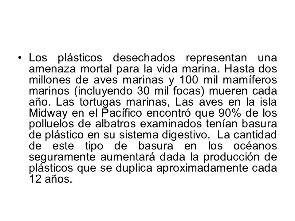 Los plásticos desechados representan una amenaza mortal para la vida marina.