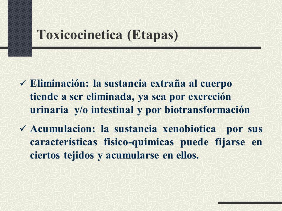 Toxicocinetica (Etapas)