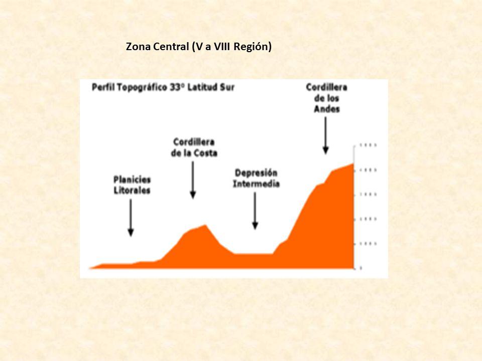 Zona Central (V a VIII Región)