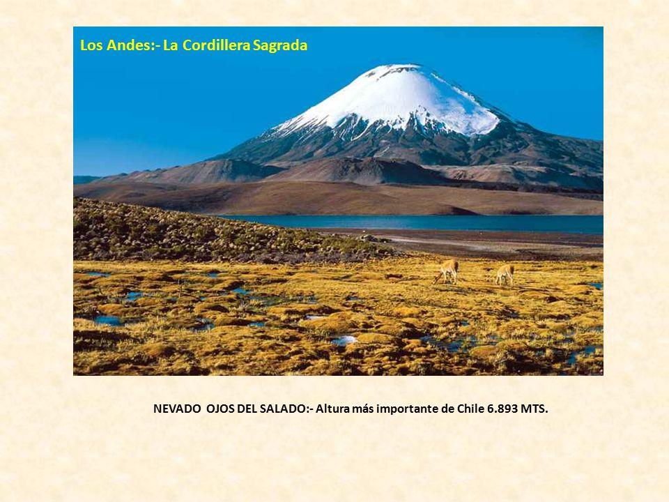Los Andes:- La Cordillera Sagrada