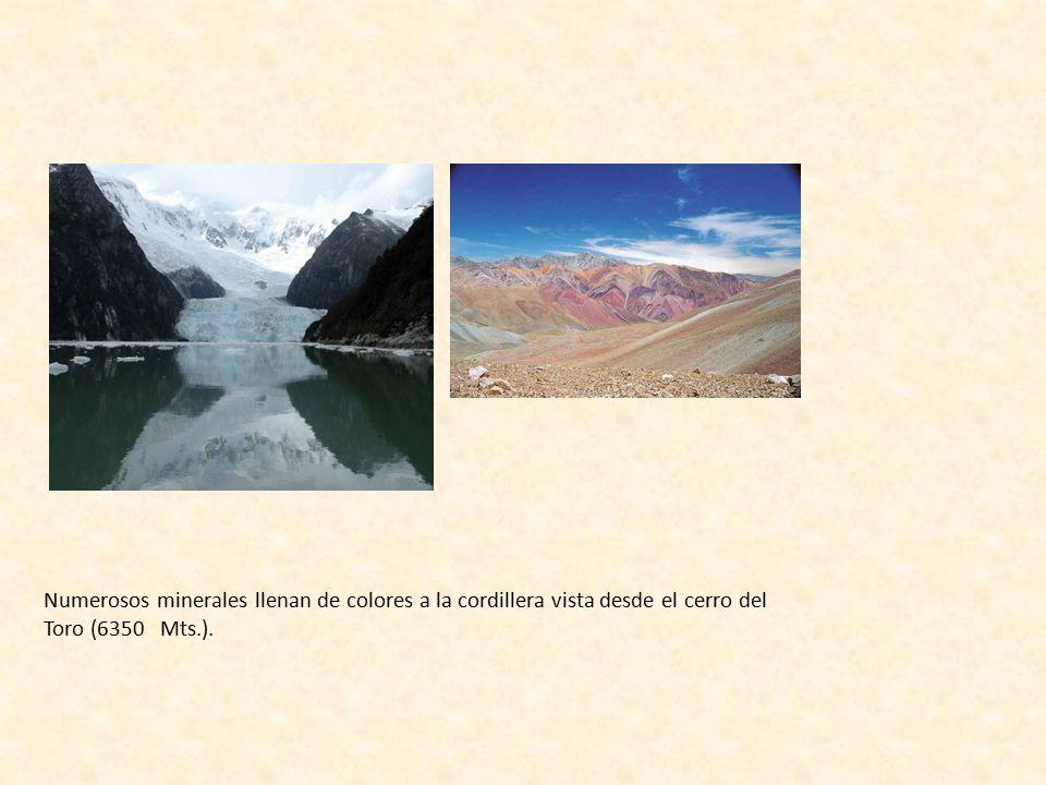 Numerosos minerales llenan de colores a la cordillera vista desde el cerro del Toro (6350 Mts.).