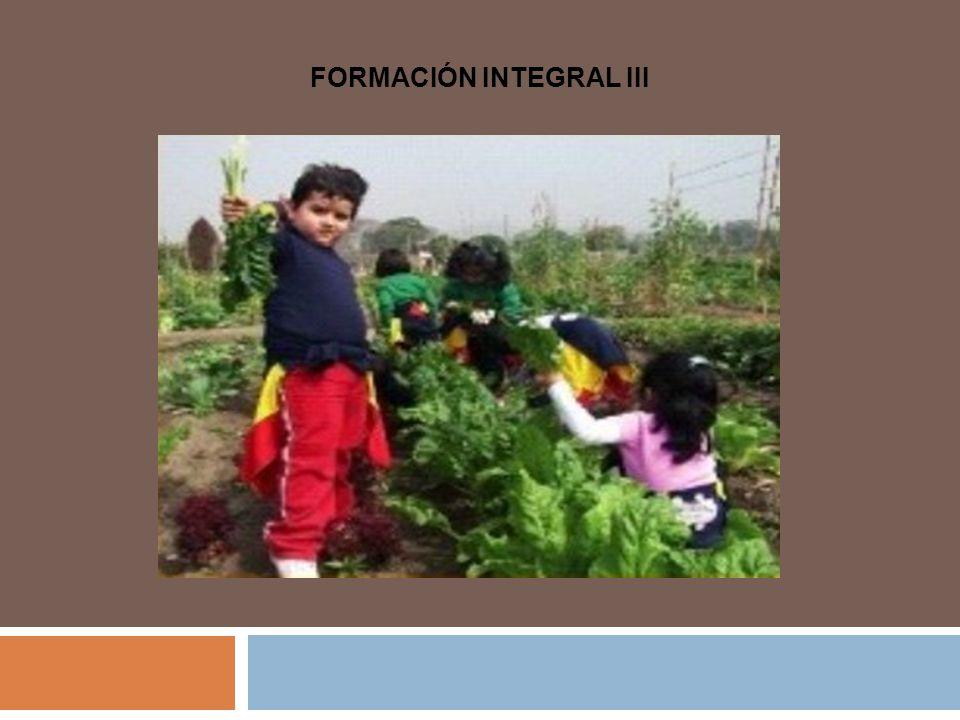 FORMACIÓN INTEGRAL III