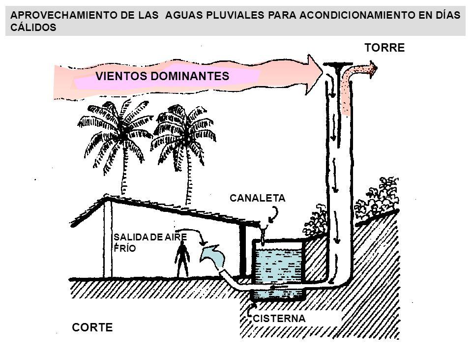 TORRE VIENTOS DOMINANTES CORTE