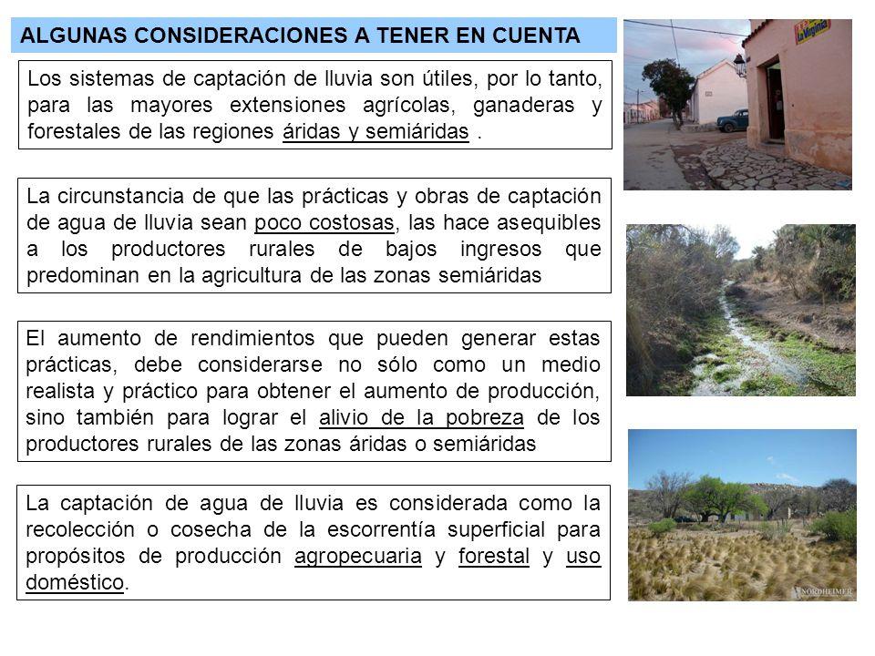 ALGUNAS CONSIDERACIONES A TENER EN CUENTA