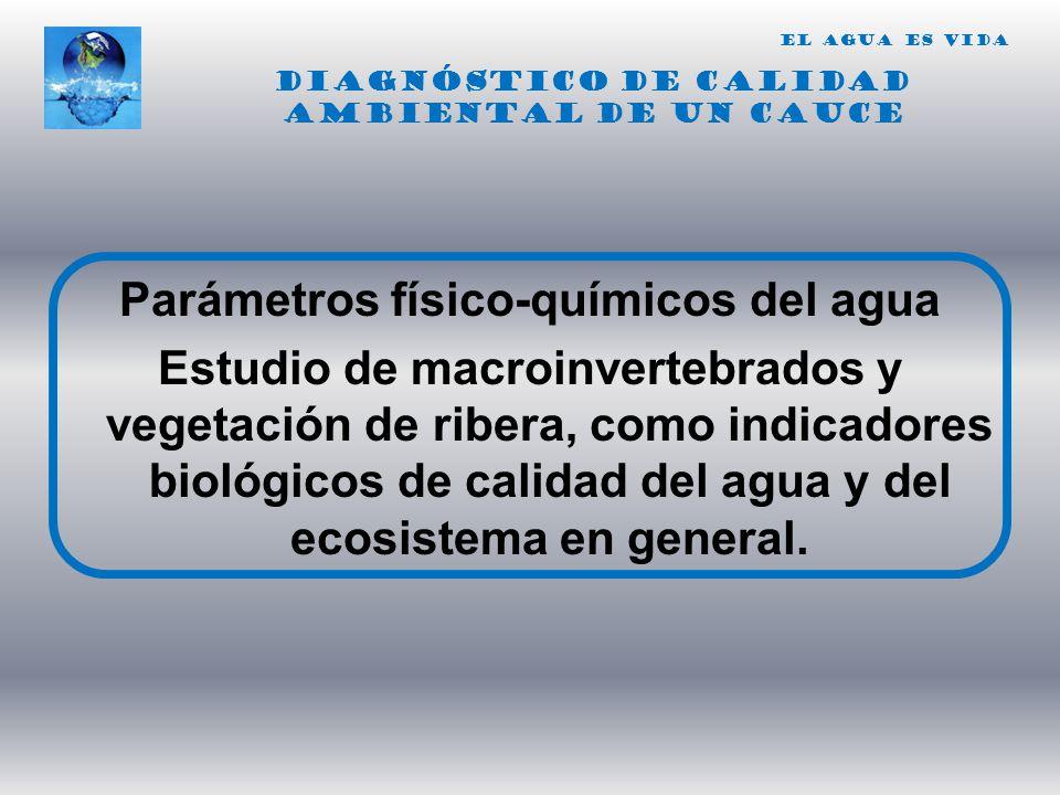 Parámetros físico-químicos del agua