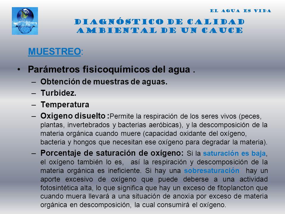 Diagnóstico de calidad ambiental de un cauce