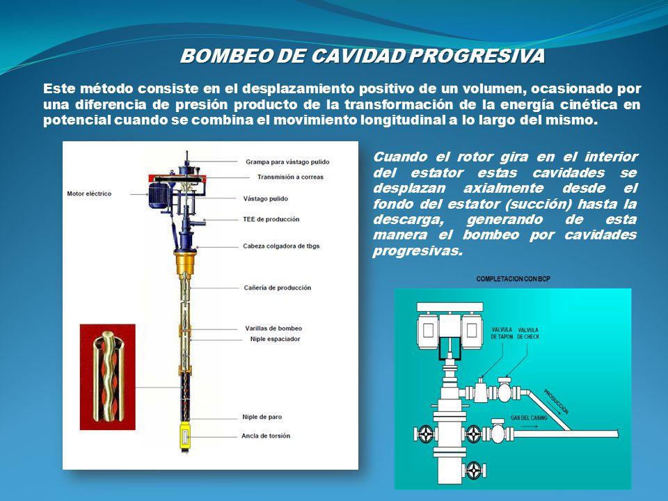 BOMBEO DE CAVIDAD PROGRESIVA