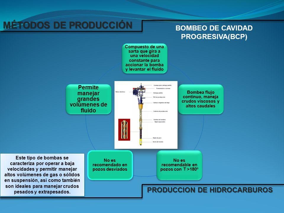 BOMBEO DE CAVIDAD PROGRESIVA(BCP)