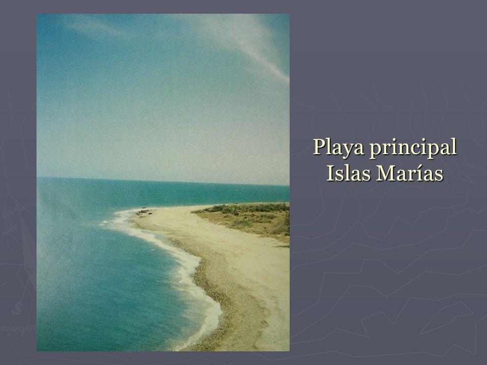 Playa principal Islas Marías