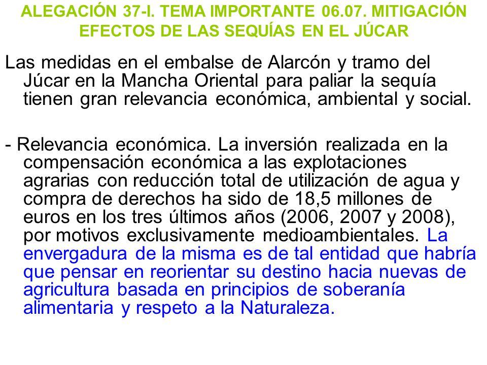 ALEGACIÓN 37-I. TEMA IMPORTANTE 06. 07