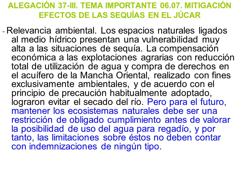 ALEGACIÓN 37-III. TEMA IMPORTANTE 06. 07