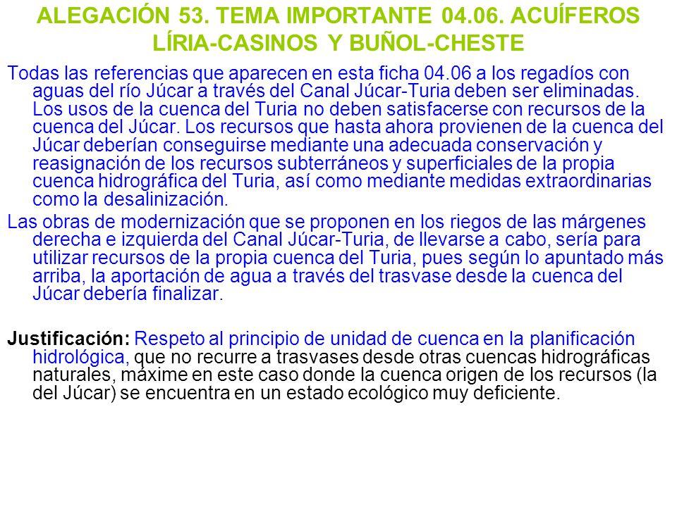 ALEGACIÓN 53. TEMA IMPORTANTE 04. 06