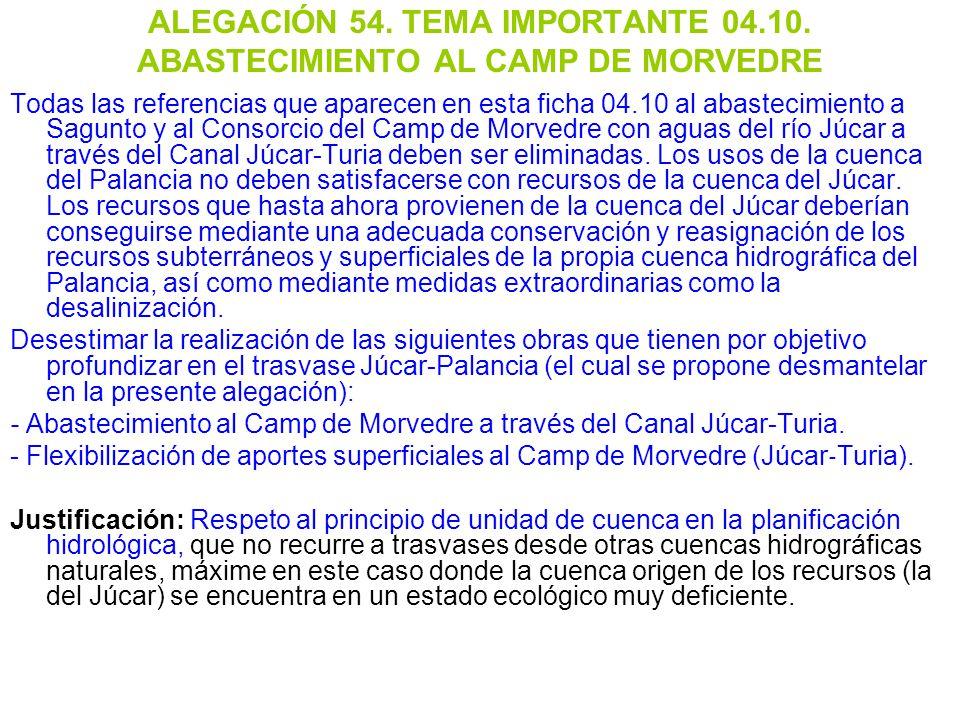 ALEGACIÓN 54. TEMA IMPORTANTE 04. 10