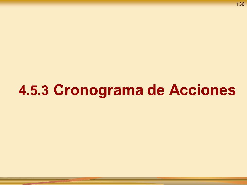 4.5.3 Cronograma de Acciones