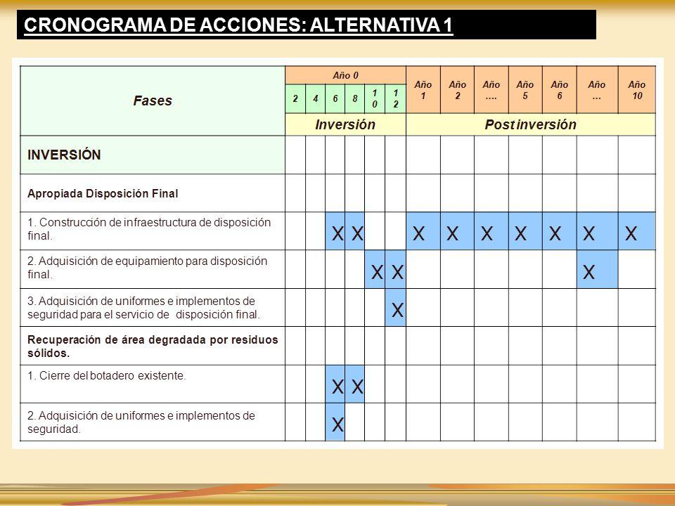 CRONOGRAMA DE ACCIONES: ALTERNATIVA 1