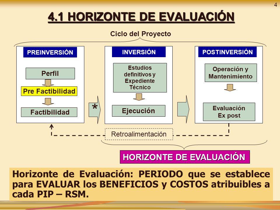 4.1 HORIZONTE DE EVALUACIÓN